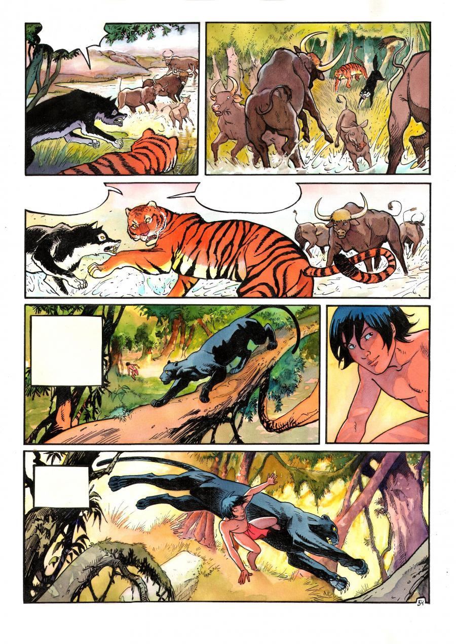 Comics Book Le Dernier Livre De La Jungle