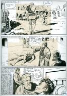 TIGER HUNTING (Artima publishers) page 7